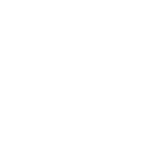 The Original Dolphin Watch logo
