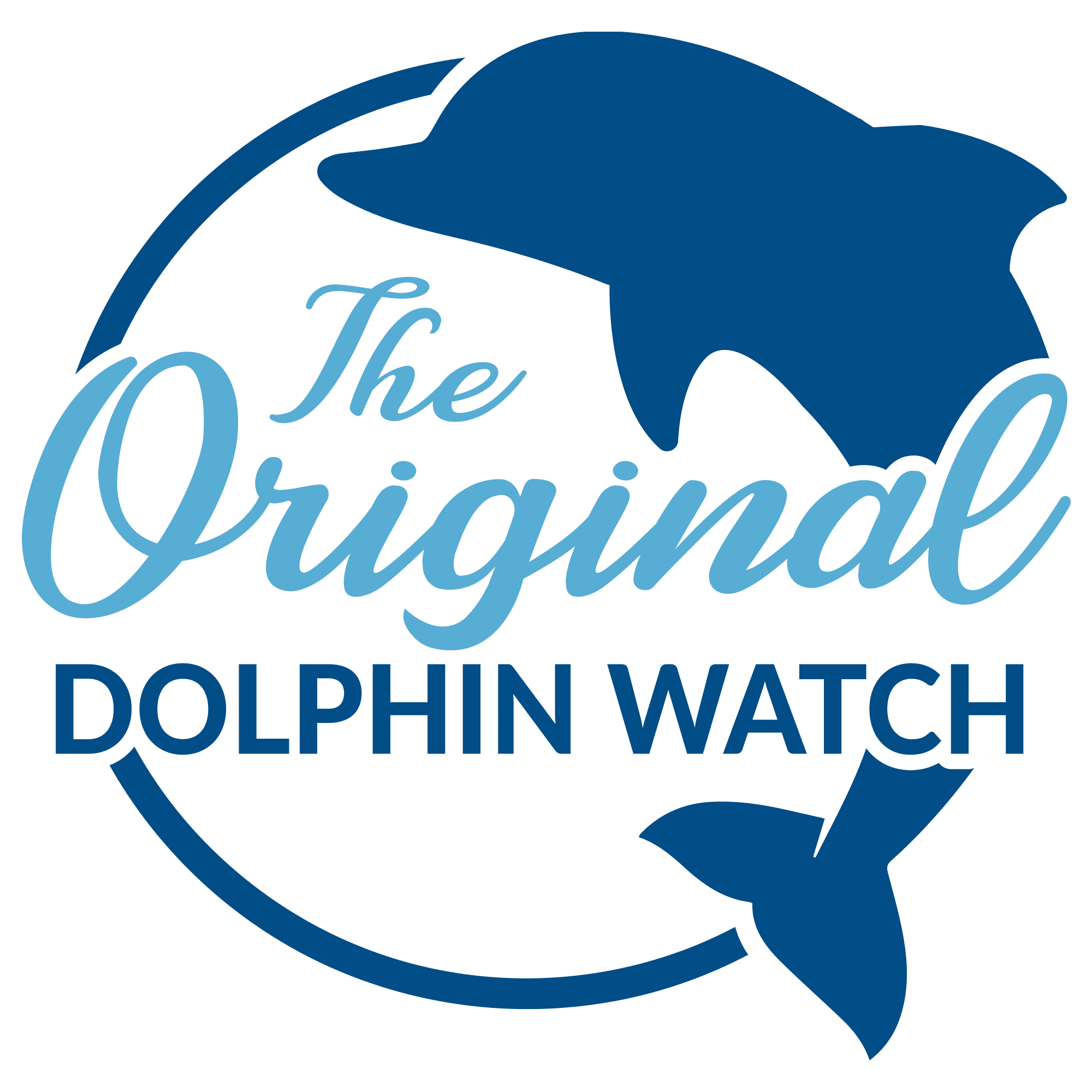 Dolphin Watch South Padre Island The Original Dolphin Watch