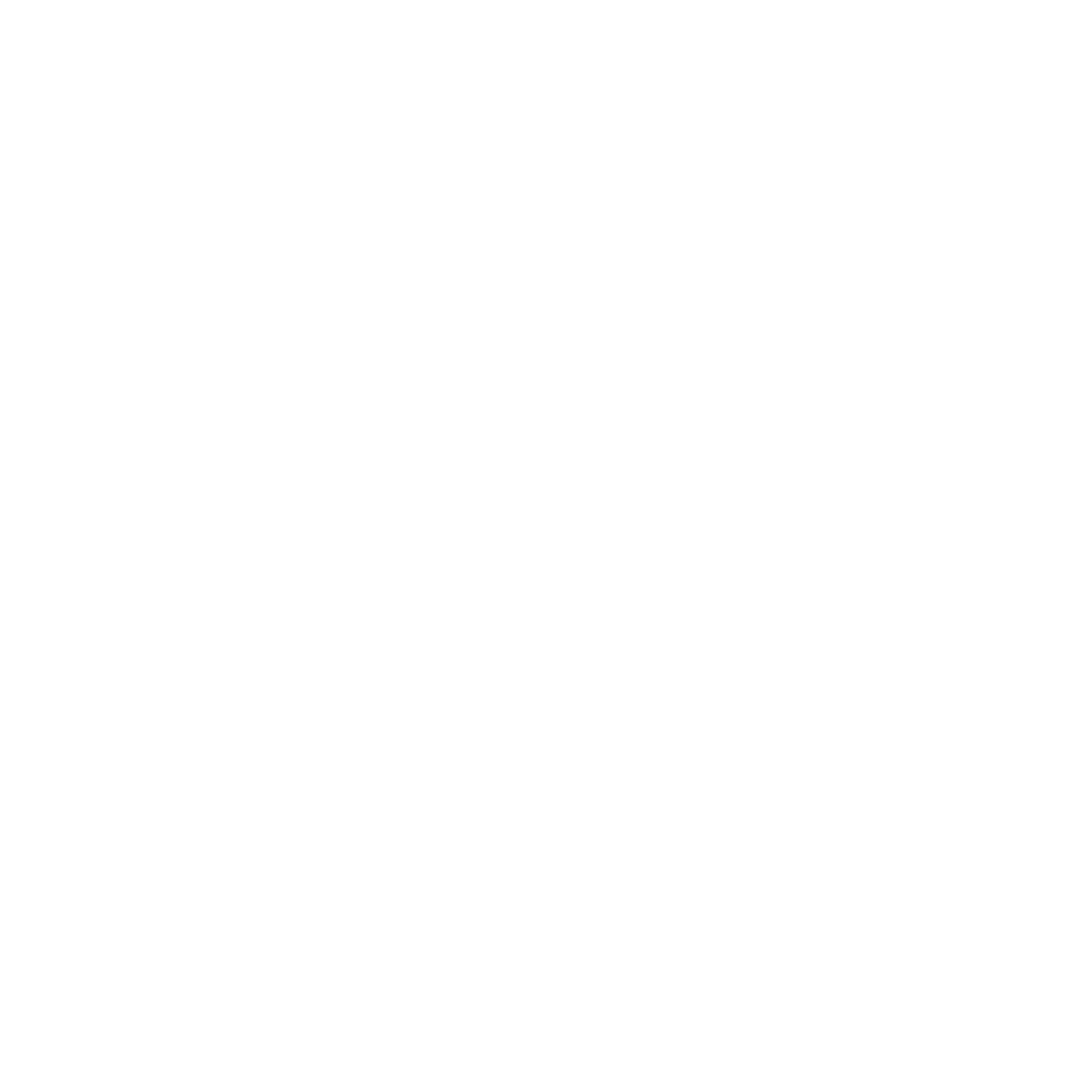The Original Dolphin Watch